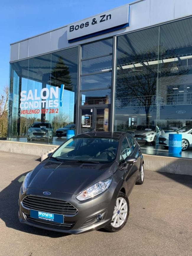ford garage Boes in Wellen