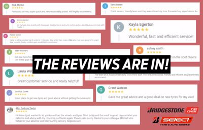 The Reviews Are In...